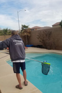 Mickey of Alpha & Omega Pool Services netting pool